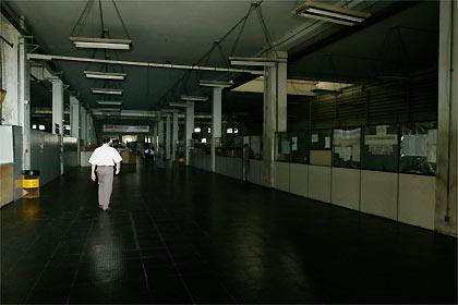 2005033008