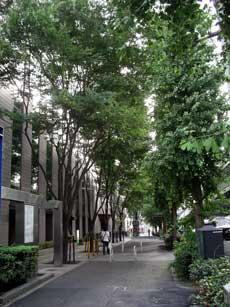 shibuya-blog20040705c.jpg